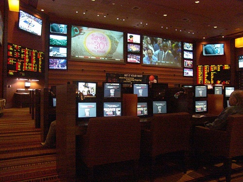 sports book showing multi views of screen and computers