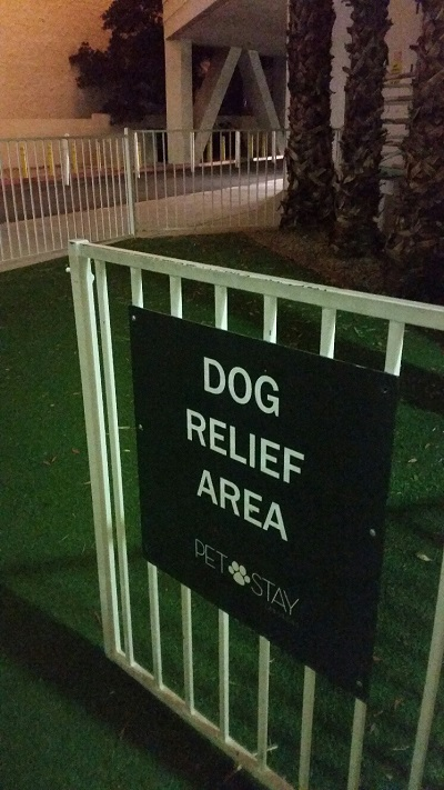 Every Hotel has a dog relief area, just do not expect to see real grass but dogs do not seem to know the difference. Collection bags are provided.
