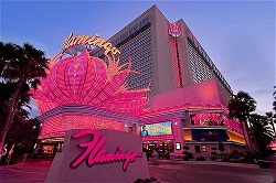 cheap vegas hotels flamingo las vegas night