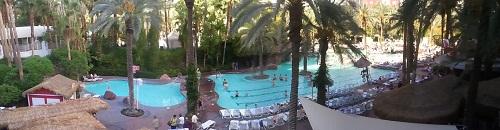 wide angle view of flamingo swimming pool