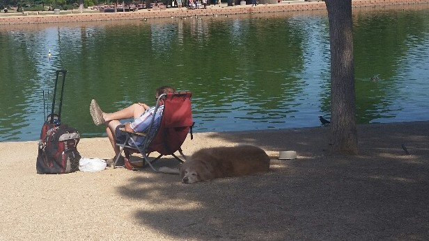Fishing and Napping are popular at Sunset Park