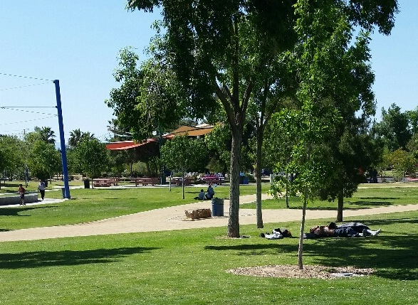 The Park has plenty of spots to take a nap, either in the sun or the shade