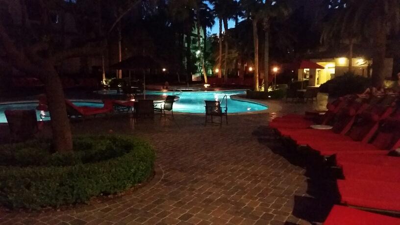 Peaceful, Relaxing Swimming pool