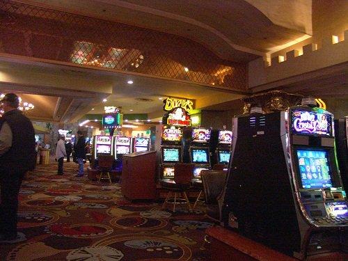 Kiwi casino online
